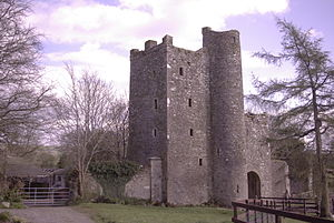 John Alan - Kilteel Castle, the home of John Alen's brother Thomas