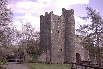 John Alan - Kilteel Castle, the home of John Alen's brother Thomas