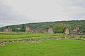 Kirkham Priory 7.jpg