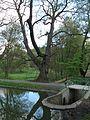 Klášterní rybník, přepad III.jpg