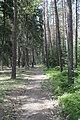 Kokořínsko, Máchova cesta a její okolí, 2012, 04.JPG