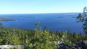 Koli National Park in Northern Karelia