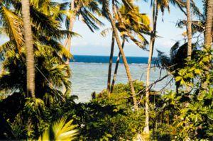 Viti Levu - Korotogo beach, Coral Coast.