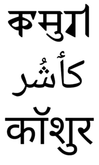 Kashmiri Language Wikipedia