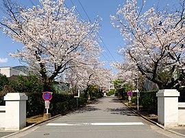 熊本高等学校正門