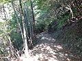 Kumano Kodo Kogumotorigoe World heritage20.JPG