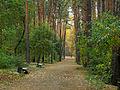 Kyiv Sovky Park9.JPG