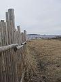 L'Anse aux Meadows - 5.jpg
