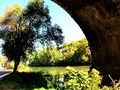L'oasi da Ponte Matteotti.jpg