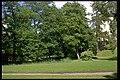 Löfstad slott - KMB - 16000300030770.jpg
