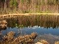 Līksna Parish, LV-5456, Latvia - panoramio (7).jpg