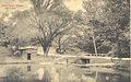 Lake at Western College (14087986521).jpg