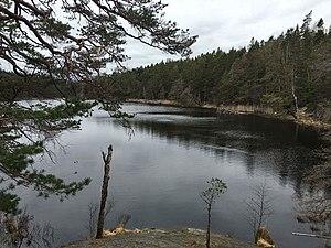 Lake view 2 - Tyresta.jpg