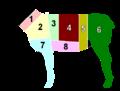 Lamb-Cuts-Brit.png