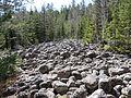 Landsberget fossilt klapperstensfält.JPG