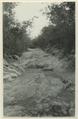 Landsvägen mellan Ticul och Kabah, Labna, Sayil. (katalogkort) - SMVK - 0307.j.0081.tif