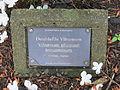 Laurelhurst Park, Portland - Doublefile Viburnum plaque.JPG