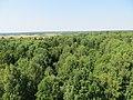 Leipalingis, Lithuania - panoramio (17).jpg