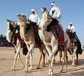 Les diplomates découvrent le charme du Sahara tunisien (5589139712).jpg