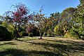 Lillian Hoffar Park - Fall.jpg