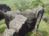 Limestone Formation In Waitomo.jpg