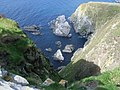 Looking down the cliff at Sumburgh - geograph.org.uk - 960840.jpg