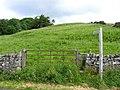 Lumpy hillside - geograph.org.uk - 501238.jpg