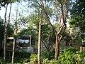 MCY Dom 1 - panoramio.jpg