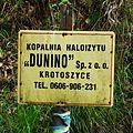 MOs810 WG 2017 15 Dolnoslaskie Zakamarki IV (Kopalnia haloizytu Dunino) (5).jpg
