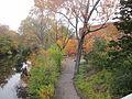 MSU 2014 River1.jpg