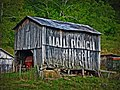 Mail Pouch Tobacco barn in Chester Township.jpg