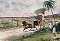 Malaysia; a pony and trap being driven down a country road. Wellcome V0037496.jpg