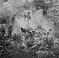 Mannen en jongens op zoek naar graven op het terrein van de voormalige Jodensava, Bestanddeelnr 252-6462.jpg