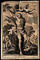 Martyrdom of Saint Sebastian. Engraving. Wellcome V0033067.jpg