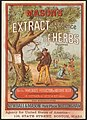 Mason's extract or essence of herbs for the immediate production of botanic beer. (front) - 8201072640.jpg