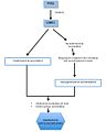 Mecanisme d'acció Pyr1.jpg