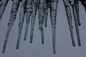 Melting Icicle Structure.jpg