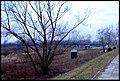 Mielec Landscape 01.jpg