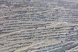 Mina de Chuquicamata, Calama, Chile, 2016-02-01, DD 126.JPG