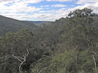 Mitchell River National Park (Victoria) - The Mitchell River valley looking north from The Bluff Lookout