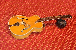 Mohan veena - VishwaMohan's instrument