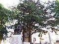Monumento ai caduti di Ruoti2.jpg