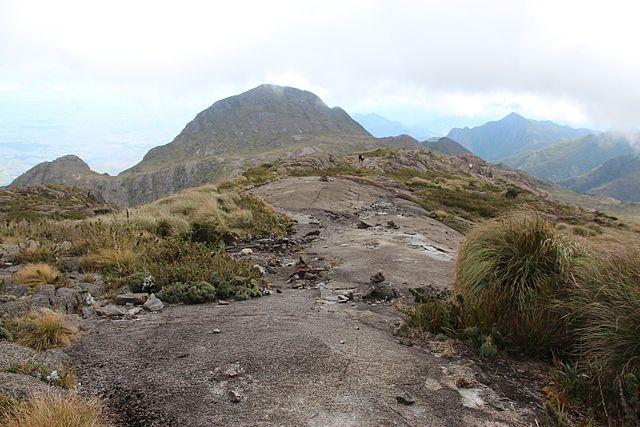 File:Morro do Tartarugão visto da subida da Pedra da Mina.jpg - Wikimedia  Commons
