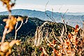 Mount Lemmon, United States (Unsplash).jpg