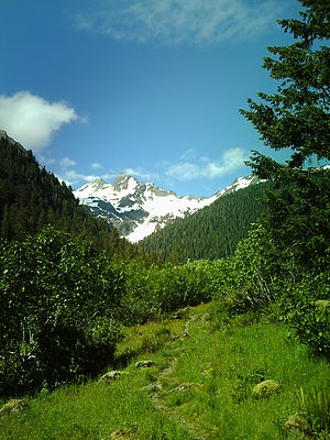 Olympic Mountains -  Mount Anderson as seen from the East Fork of the Quinault River