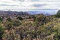 Munds Mountain Trail (23988418537).jpg