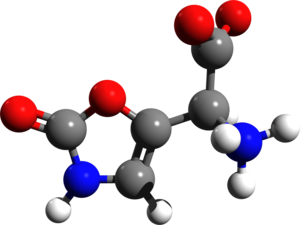 Muscazone - Image: Muscazone 3d structure