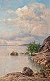 Musnterhjelm, Summer Day in the Archipelago.jpg