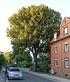 ND Jakobstraße DSC01738.jpg