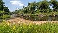 NSG Rurauenwald-Indemuendung FFH-Gebiet Indemündung Sandbank mit Ufervegetation IV.jpg